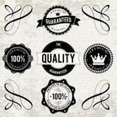 Collection of High Quality labels — Stock Vector