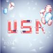 USA independence day illustration — Stock Vector