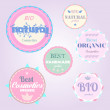 Organic cosmetics vintage labels — Stock Vector