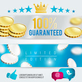 Limited edition vector template — Stock Vector