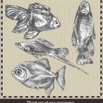 Набор морских рыб. Ретро-стиле векторные иллюстрации. Изолированные на сером фоне — Cтоковый вектор