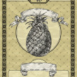 Vintage banner with pineapple. Vintage style vector illustration — Stock Vector #27998461