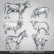 Set of domestic animals cow, sheep, pig, goat, donkey. Vector illustration — Stockvektor