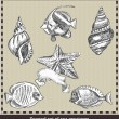 Set of sea fish,seashell and starfish. Retro style vector illustration. Isolated on grey background — Stockvectorbeeld