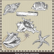 Set of sea fish,seashell and starfish. Retro style vector illustration. Isolated on grey background — Stock Vector