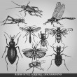 Vector set of insects on grunge background — Imagen vectorial