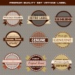Premium quality set of vector vintage labels on gray background — Stock Vector
