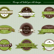 Vector vintage set label for old design on green — Stock Vector