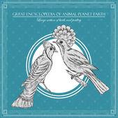 Gran enciclopedia del planeta animal, ilustración de aves vintage — Vector de stock