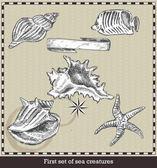 Set of sea fish,seashell and starfish. Retro style vector illustration. Isolated on grey background — Stock Vector