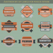 Set of retro vector labels and badges — Stock Vector