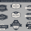 Retro vector labels and badges — Stock Vector