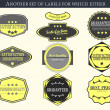 Vintage vector labels and badges — Stock Vector