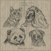 Set of animals from encyclopedia — 图库矢量图片