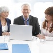 Executive Business Team — Stock Photo #23557609