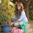 Beautiful mature woman gardening — Stok fotoğraf
