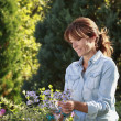 Stock Photo: Beautiful mature woman gardening