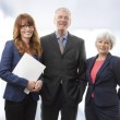 Executive Business Team — Stock Photo #23909411
