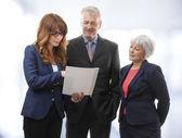 Executive Business Team — Stock Photo