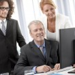Executive Business Team — Stock Photo #25833159