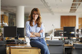 Smiling professional businesswoman — Stock Photo