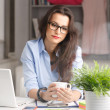 Young beautiful businesswoman working at home — Stock Photo #40946133
