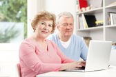 Senior couple surfing on internet — Foto de Stock