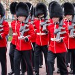 Changing the guard — Stock Photo