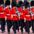 Changing guard — Stock Photo #24929115