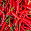 Red chilli background — Stock Photo #24929435