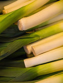 Green and white leeks — Stock Photo