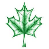 Decorative ornament maple leaf — Stock Vector