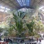 Atocha Railway station, Madrid, Spain — Stock Photo #23193164