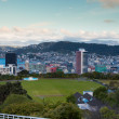Wellington Skyline — Stock Photo