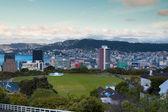 Wellington manzarası — Stok fotoğraf