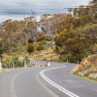 Winding Road With Speed Warning in Tasmania — Stock Photo