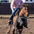 Team Roping in Wickenburg — Stock Photo #31166279