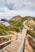 Cape Schanck Boardwalk — Stock Photo