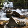 Liffey Falls — Stock Photo #32810723