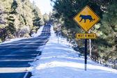 Animal Warning Sign — Foto Stock