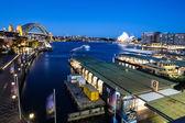 Sydney Boat Traffic — Stock fotografie