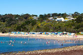 Spiaggia di mulini a mornington — Foto Stock