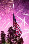 Independance Day Fireworks — Stok fotoğraf