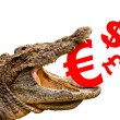 Money symbols (Euro, Dollar, Pound, Yen) eaten by crocodile for — Stock Photo