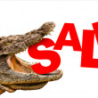 Sale text eaten by crocodile for sale, crash or discount. — Stock Photo