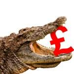 British Pound symbol eaten by crocodile for sale, crash or disco — Stock Photo #27361089