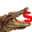 Dollar symbol eaten by crocodile for sale, crash or discount. — Stock Photo #27361305