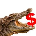 Dollar symbol eaten by crocodile for sale, crash or discount. — Stock Photo
