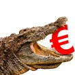 Euro symbol eaten by crocodile for sale, crash or discount. — Stock Photo