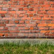 Red brick wall background with green grass. — Stock Photo #43586047
